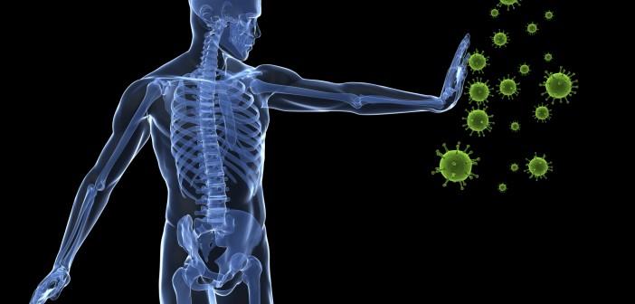 Hericium a protizánětlivé účinky