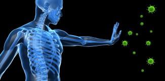 Coriolus a ovlivnění imunity u zdravých lidí