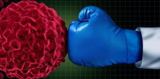 Shiitake a imunitní systém